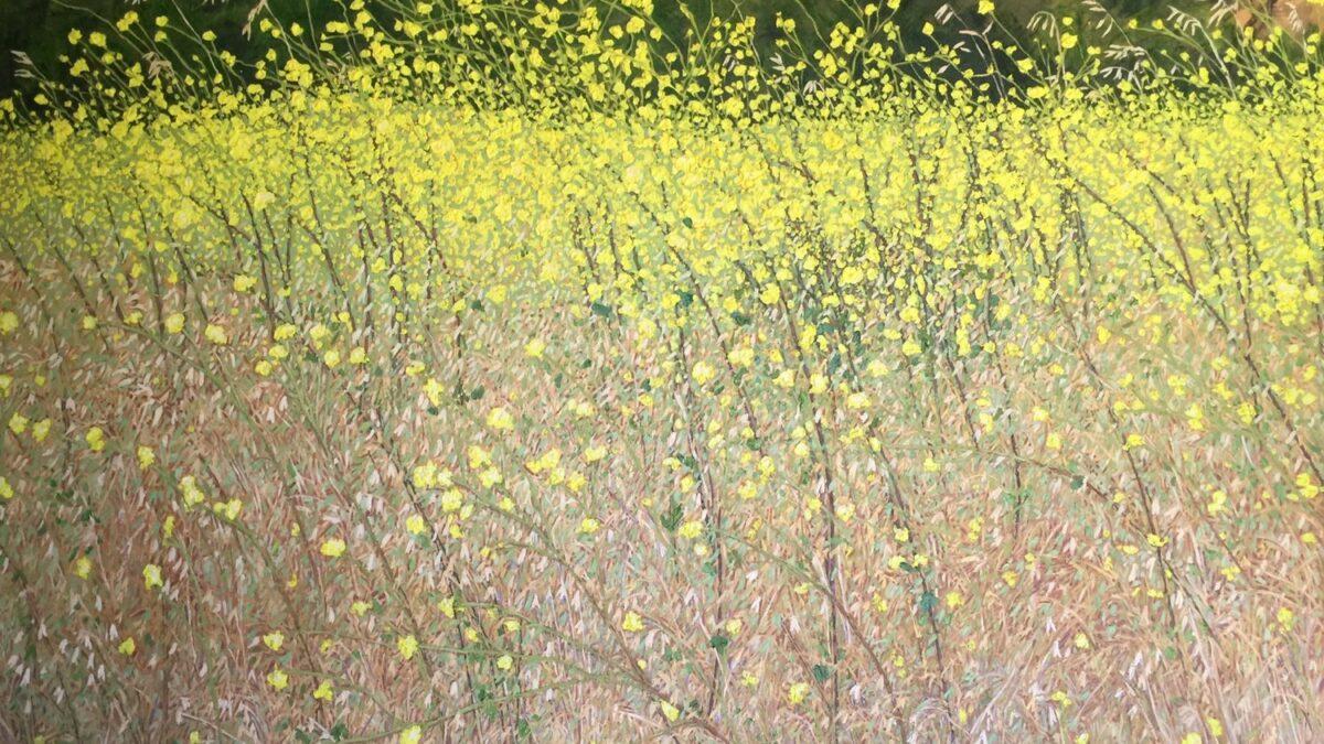 Artist Lisa Baldwin Celebrates Wild Places