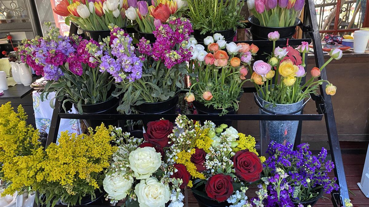 Flower Power Topanga