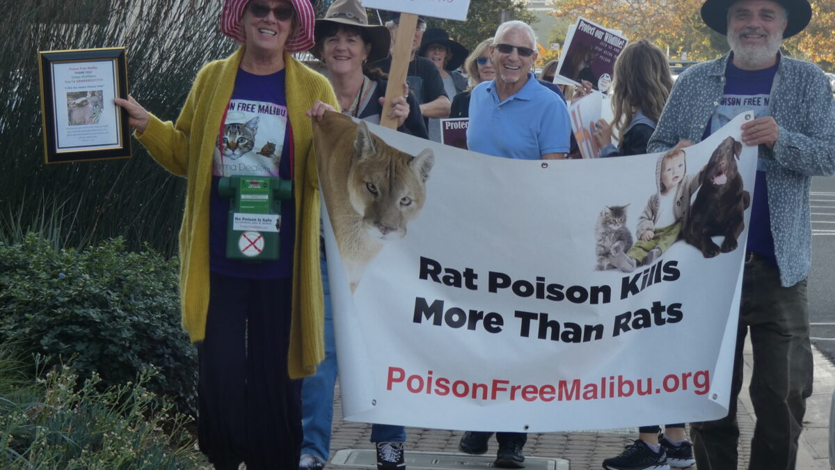 Malibu Poison Ban
