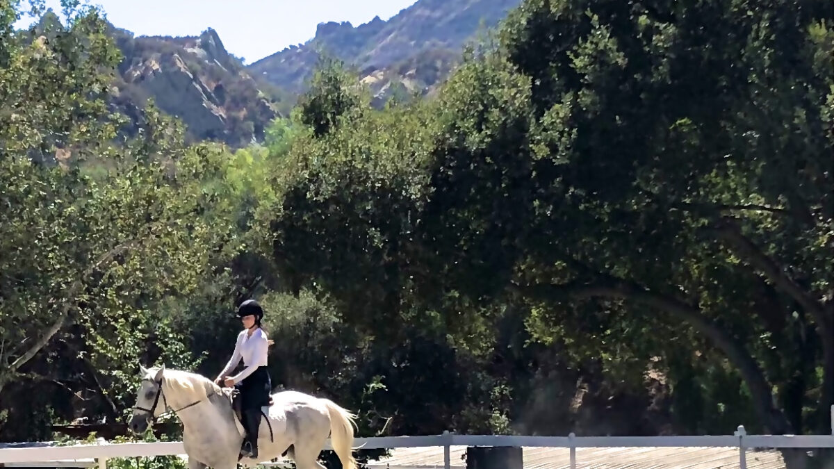 Saddle Up! Or Learn How to at Topanga Canyon's Westside Riding School